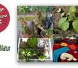 """Jetzt schlägt´s 13! - Aktionstag zum Thema """"Kultur und Natur"""""""